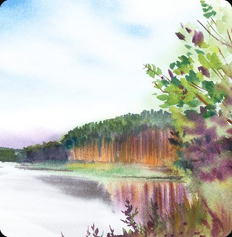 Serene Landscape
